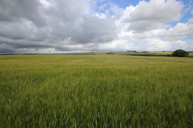 Thumbnail Land for sale in Foxholes, Driffield