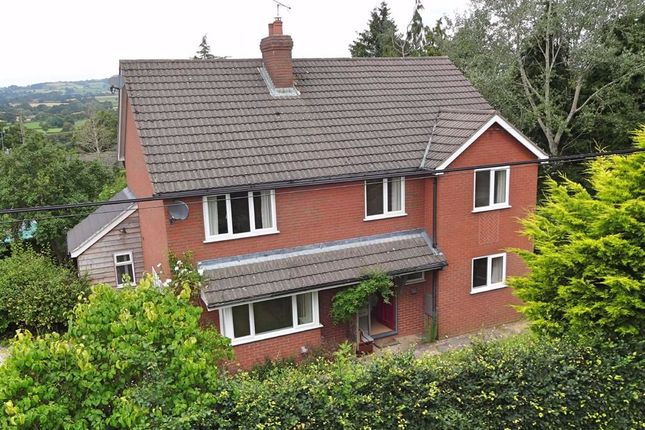 Thumbnail Detached house for sale in Hillcrest, Hall Bank, Montgomery, Powys