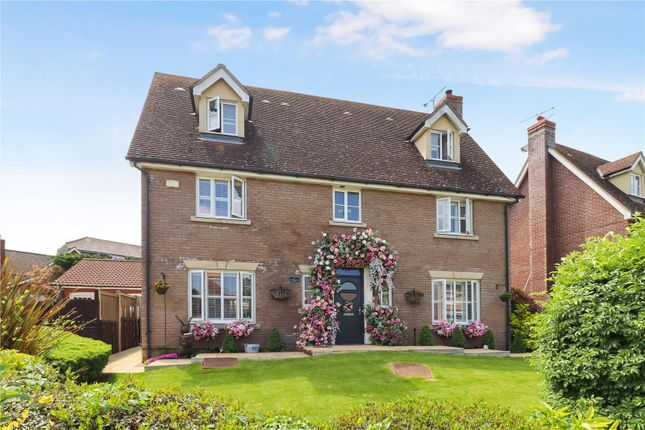 Thumbnail Detached house for sale in Queenborough Lane, Great Notley, Braintree
