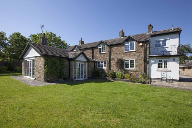 Thumbnail Equestrian property for sale in Barlow, Dronfield