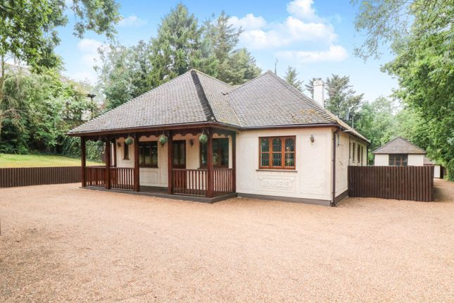 Thumbnail Detached bungalow for sale in Little Warley Hall Lane, Brentwood