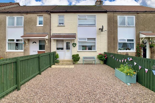 Thumbnail Terraced house for sale in Larch Terrace, Beith