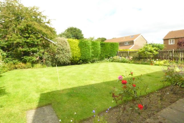 Thumbnail Detached house to rent in Hepscott Drive, Whitley Bay