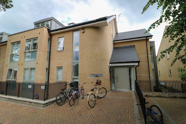 Studio for sale in Primrose Street, Cambridge CB4