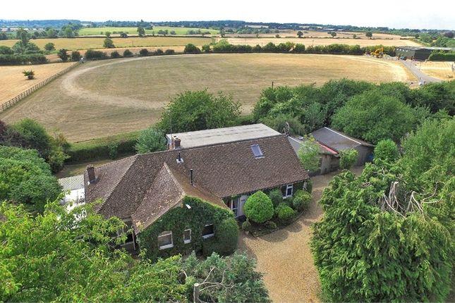 Thumbnail Detached house for sale in Roade Hill, Ashton, Northampton