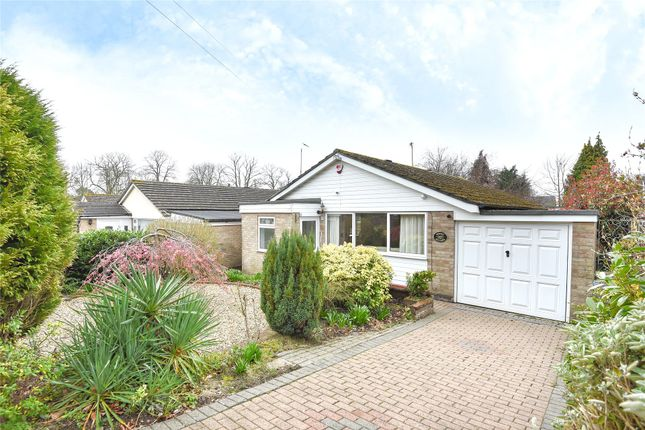 Thumbnail Detached bungalow to rent in Mulberry Close, Crowthorne, Berkshire