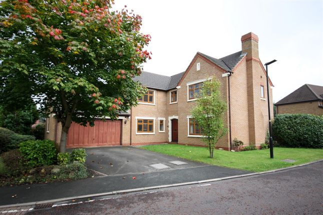 Thumbnail Detached house for sale in Levens Close, Banks, Southport
