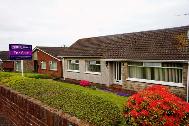 Thumbnail Detached bungalow for sale in Towerview Crescent, Bangor