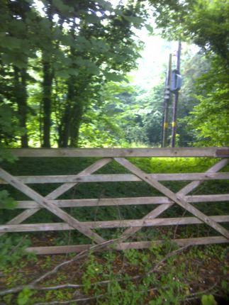 Thumbnail Land for sale in Green Dene, East Horsley, Leatherhead