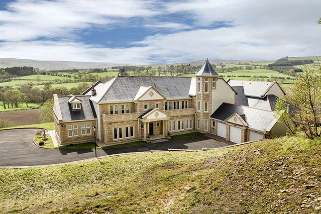 Thumbnail Detached house for sale in Summer Breeze, Holywood, Wolsingham, County Durham