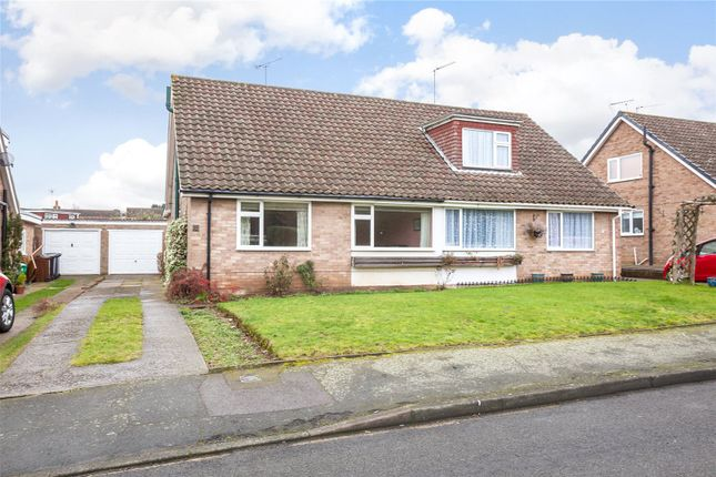 Thumbnail Semi-detached house for sale in Beech Grove, Higham, Kent