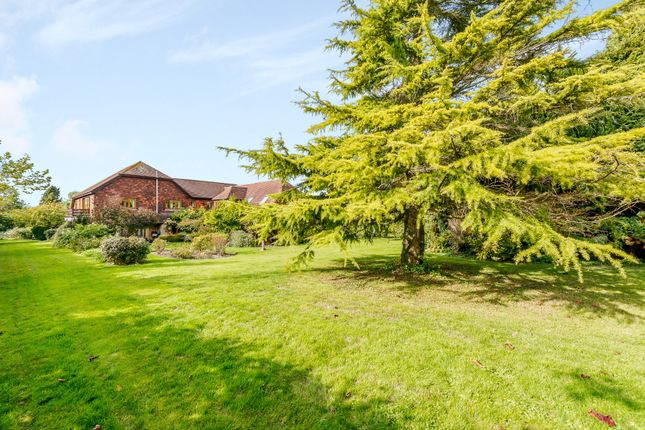 Thumbnail Detached house for sale in Underhill Lane, Ditchling, Hassocks
