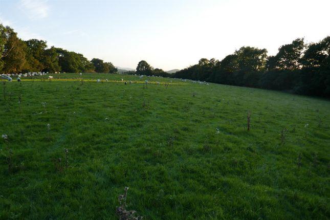 Thumbnail Land for sale in Myddfai, Llandovery