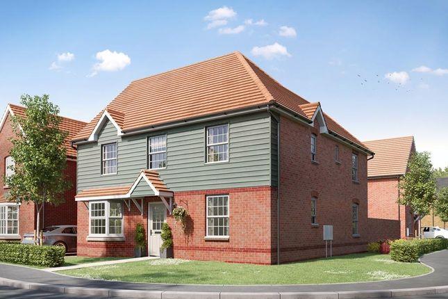 """4 bed detached house for sale in """"Avondale"""" at Brogdale Road, Ospringe, Faversham ME13"""