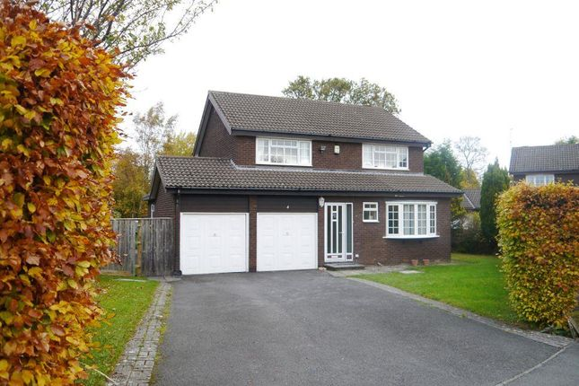 Thumbnail Detached house to rent in Westsyde, Ponteland, Newcastle Upon Tyne