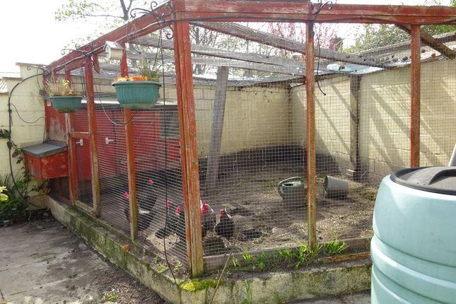 Chicken Pen of Hatfield House Lane, Sheffield S5