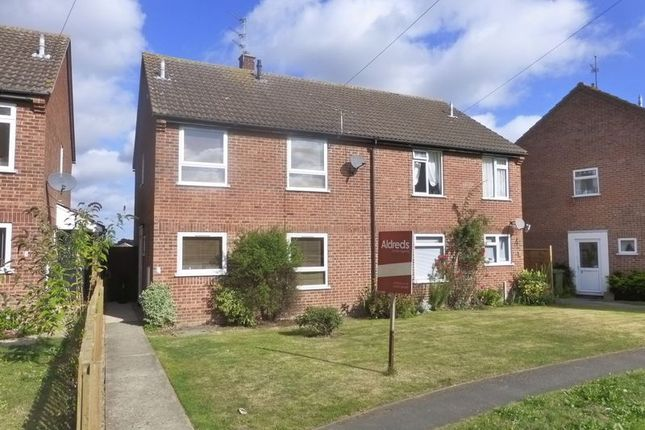 Thumbnail Semi-detached house to rent in Calthorpe Close, Stalham, Norwich
