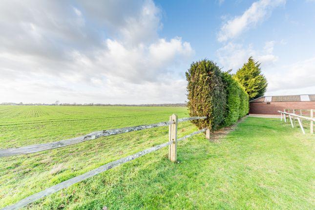 Views of Tortington Lane Farm, Tortington Lane, Arundel BN18