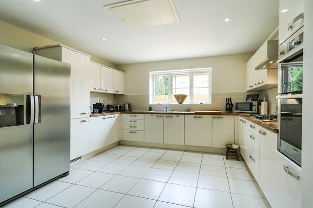 Thumbnail Detached house for sale in Heathland Way, Mildenhall, Bury St. Edmunds
