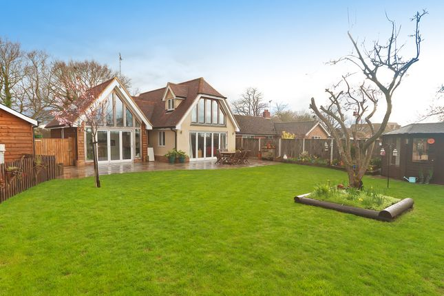 Thumbnail Detached house for sale in Great Leighs, Banters Lane, Great Leighs