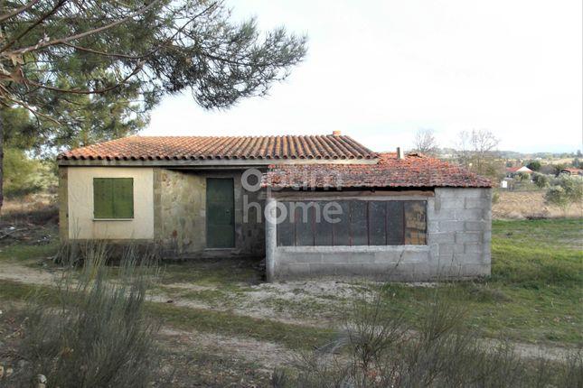 Monte Bispo, Caria, Belmonte