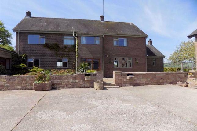 Thumbnail Detached house to rent in Springbank Wood, Blackshaw Moor, Leek, Staffordshire