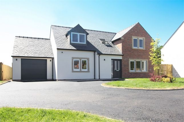 Thumbnail Detached house for sale in Honeypot Meadow, Cargo, Carlisle, Cumbria