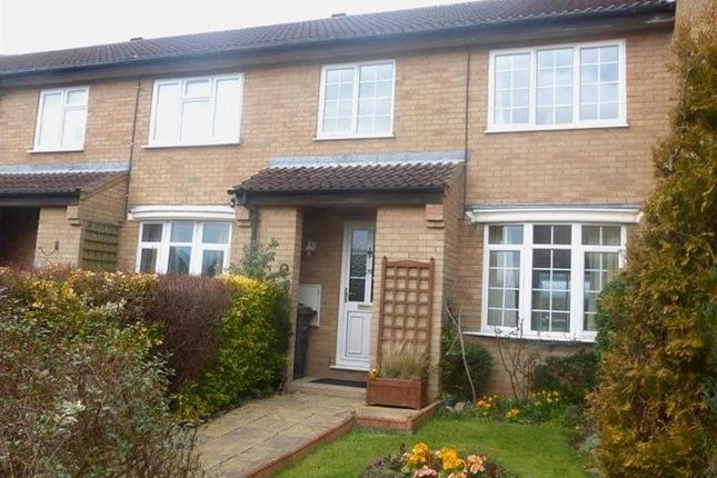 Thumbnail Property to rent in The Orchard, Riseley, Bedford