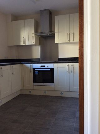 Thumbnail Terraced house to rent in Bow, Crediton
