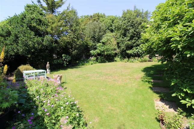 Thumbnail Property to rent in Tongdean Avenue, Hove