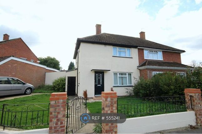 Thumbnail Semi-detached house to rent in Ripley Close, New Addington