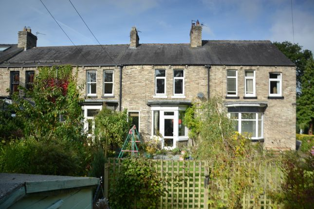 Thumbnail Terraced house for sale in Officials Terrace, Malton, Lanchester