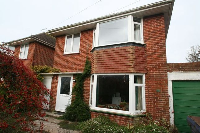 Thumbnail Detached house to rent in The Strand, Goring-By-Sea, Worthing