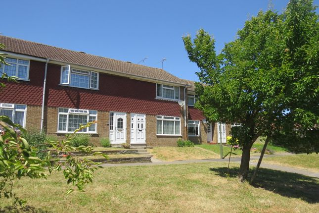 Thumbnail Terraced house to rent in Buckland Road, Farnborough, Orpington