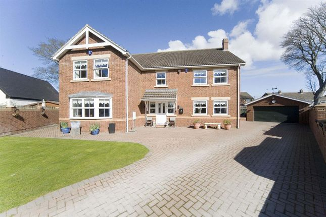 Thumbnail Detached house for sale in Thetford Road, Hartlepool