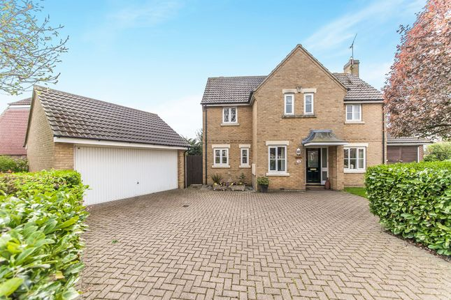 Thumbnail Detached house for sale in Fambridge Road, Maldon