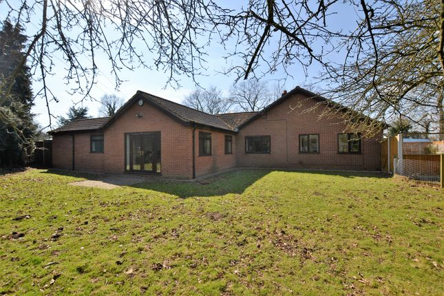 Thumbnail Detached bungalow for sale in Dereham Road, Westfield, Dereham, Norfolk.