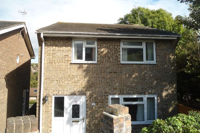 Thumbnail Semi-detached house to rent in Dartmouth Close, Brighton