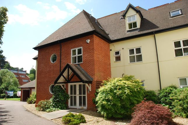 Thumbnail Flat to rent in Lower Argyll Road, Exeter