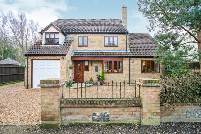 Thumbnail Detached house for sale in Angle Common, Soham, Ely