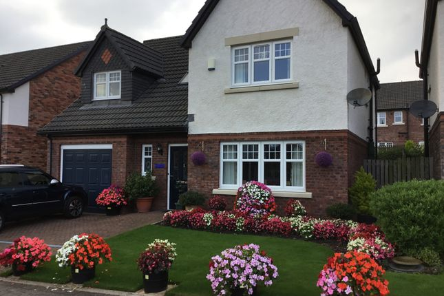 Thumbnail Detached house for sale in Kirkland Fold, Wigton