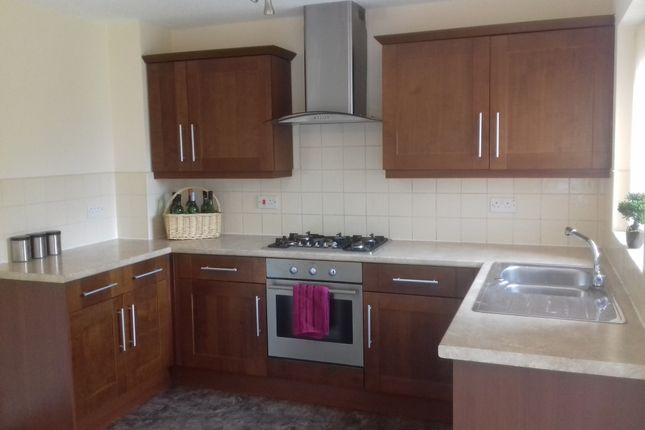 Thumbnail Semi-detached house to rent in Harling Street, Burnley