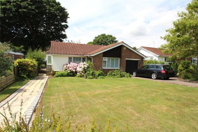 Thumbnail Detached bungalow for sale in Holmcroft Gardens, Findon Village, Worthing