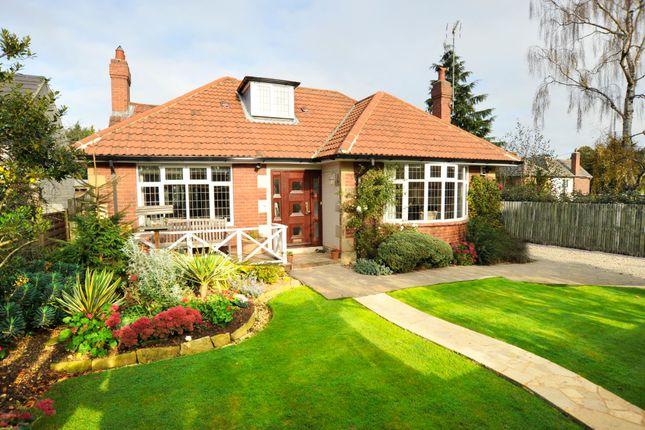 Thumbnail Detached bungalow for sale in Lascelles Road, Harrogate