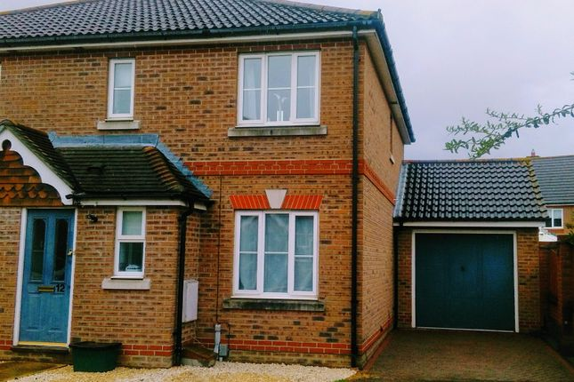 Thumbnail Semi-detached house to rent in Petronius Way, Highwoods, Colchester