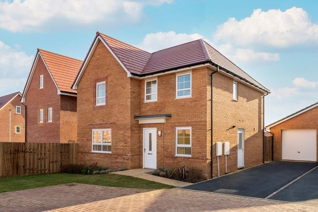 """Thumbnail Detached house for sale in """"Radleigh"""" at Hawk Grove, Brough"""