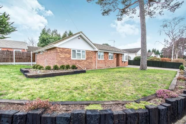 Thumbnail Bungalow for sale in St Ives, Ringwood, Hampshire