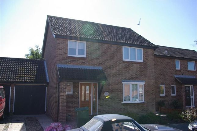Thumbnail Detached house to rent in Coopers Avenue, Heybridge, Maldon