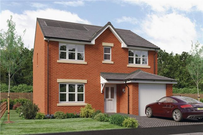 """Thumbnail Detached house for sale in """"Lyle"""" at Brora Crescent, Hamilton"""