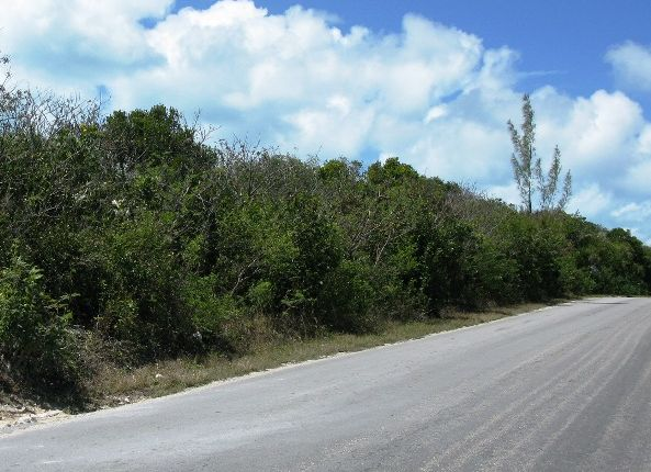 Land for sale in Eleuthera Island Shores, Eleuthera, The Bahamas
